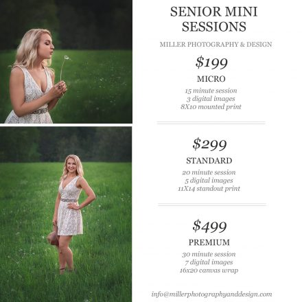 limited edition senior mini sessions